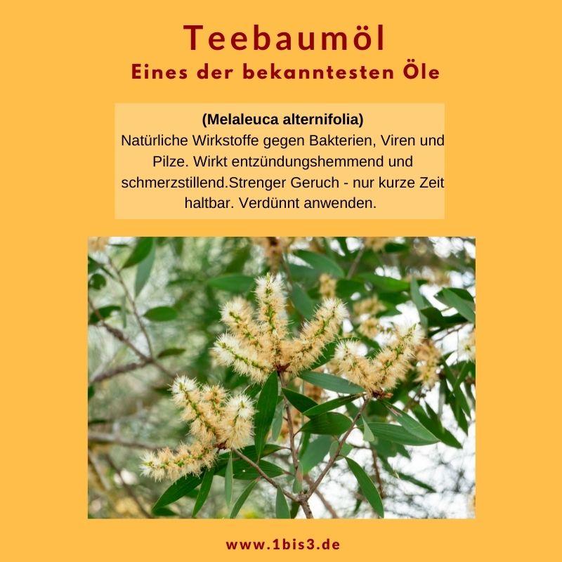 Teebaumöl - traditionelles Öl aus Australien Neuseeland