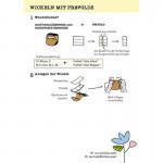 hu-da OneSize Überhose mit Prefold-Lasche (1 Lage PUL)