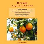 Orange bio (10 ml) Primavera