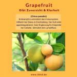Grapefruit bio (5 ml)