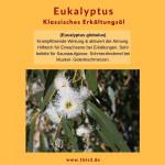 Eukalyptus globulus bio (5 ml)
