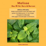 Melisse bio (1 ml)